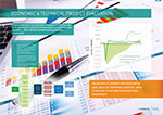 economic and project evaluation